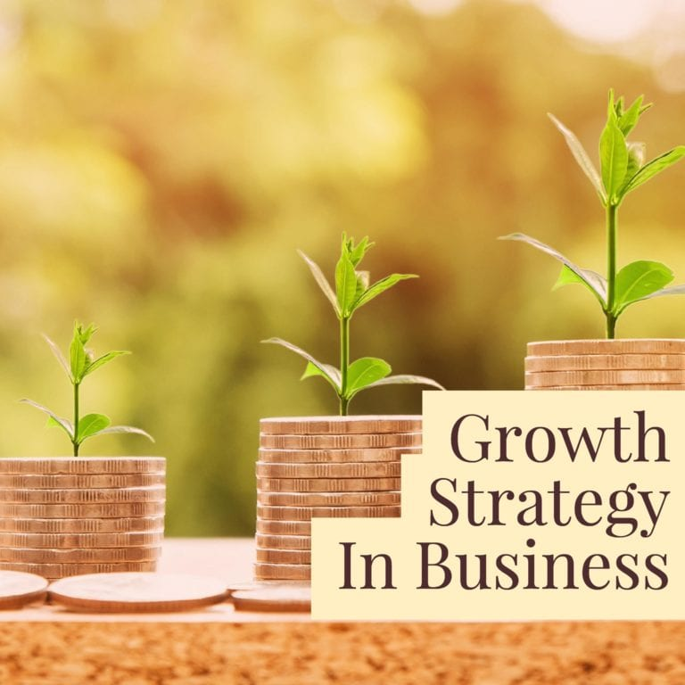 Growth Strategy In Business