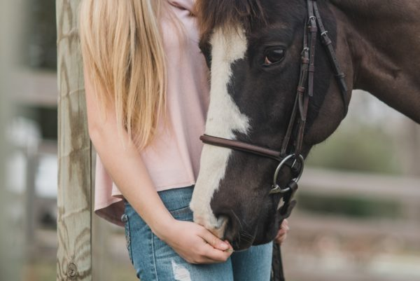 kirsten lachance 488334 unsplash e1530078735938 - Heartrepreneur® Radio | Episode 109 | The Resonant Horse: Catalysts For Change And Transformation with Mindy Tatz Chernoff