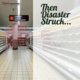From Disaster To Wealth